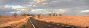 Prenájom auta Gunnedah, Austrália