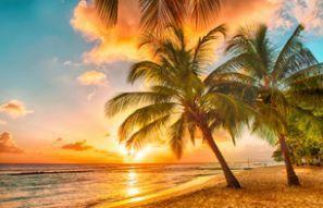 Autopožičovňa Barbados