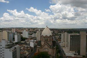 Prenájom auta Araraquara, Brazília