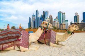 Autopožičovňa Spojené Arabské Emiráty